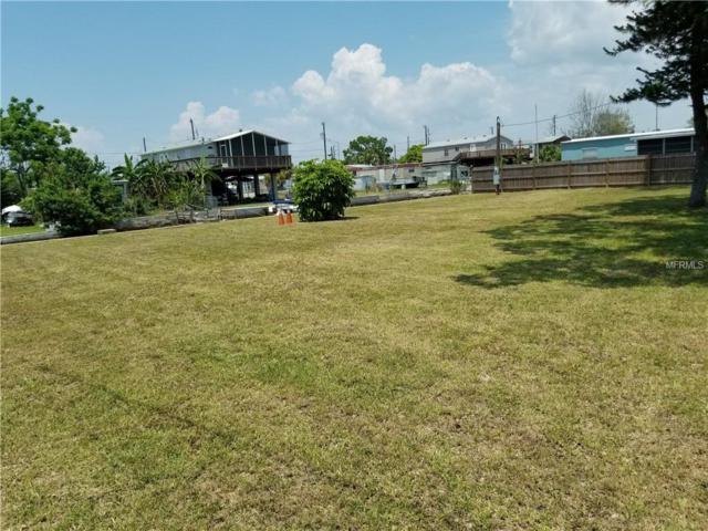 6815 Puffin Lane, Hudson, FL 34667 (MLS #T3174776) :: The Duncan Duo Team