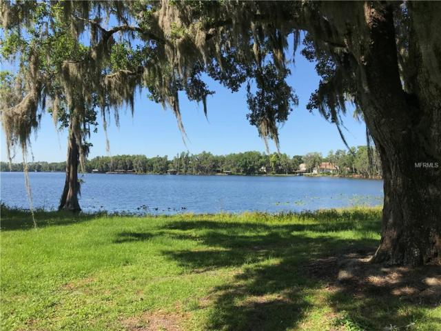 7720 N Mobley Road, Odessa, FL 33556 (MLS #T3174876) :: Team Bohannon Keller Williams, Tampa Properties
