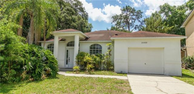 21000 Negril Court, Lutz, FL 33558 (MLS #T3175011) :: Team TLC | Mihara & Associates