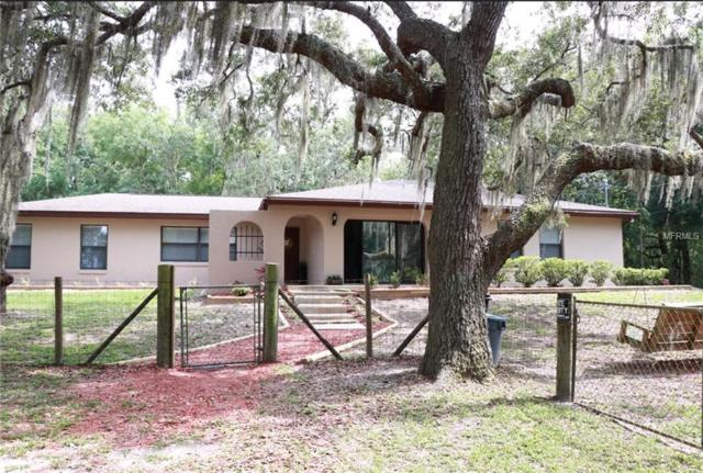 5700 W Gulf To Lake Highway, Crystal River, FL 34429 (MLS #T3175222) :: The Duncan Duo Team
