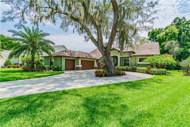 3408 Graycliff Lane, Brandon, FL 33511 (MLS #T3175391) :: Delgado Home Team at Keller Williams