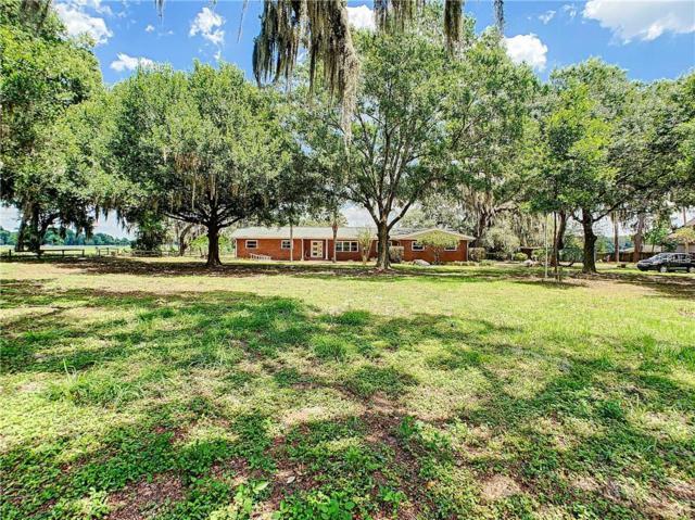 4031 Moores Lake Road, Dover, FL 33527 (MLS #T3175404) :: Team TLC | Mihara & Associates