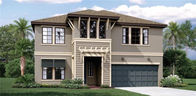 11723 Jackson Landing Place, Tampa, FL 33624 (MLS #T3175562) :: Burwell Real Estate
