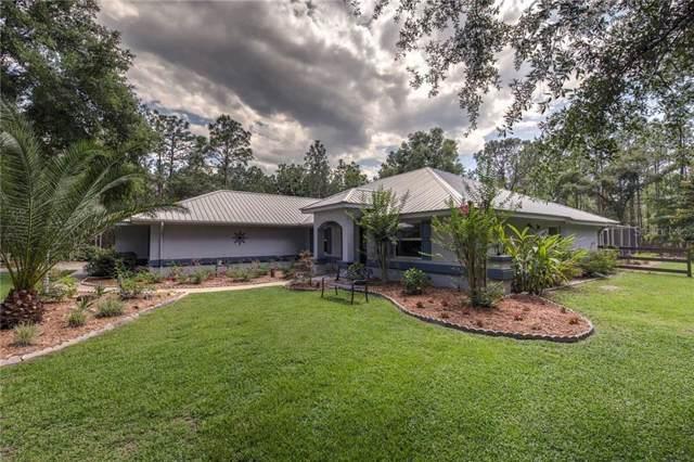 3979 N Buckhorn Drive, Beverly Hills, FL 34465 (MLS #T3175775) :: Team Borham at Keller Williams Realty