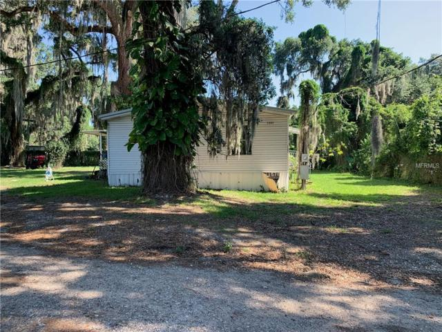 1509 Lakeview Avenue, Seffner, FL 33584 (MLS #T3176086) :: Jeff Borham & Associates at Keller Williams Realty