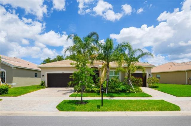 5008 Emerald Isle Drive, Wimauma, FL 33598 (MLS #T3176893) :: Griffin Group