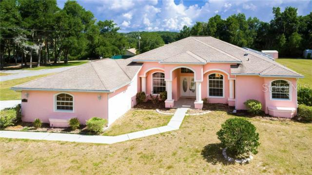 35317 Flowerfield, Dade City, FL 33525 (MLS #T3177786) :: White Sands Realty Group