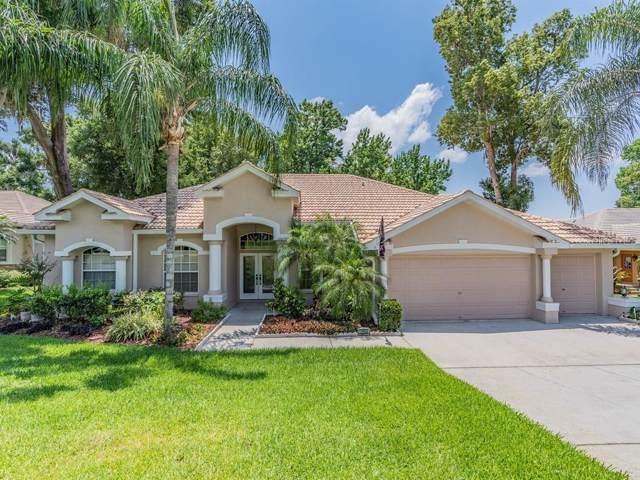 12650 Oak Hollow Court, Dade City, FL 33525 (MLS #T3177858) :: Team Bohannon Keller Williams, Tampa Properties