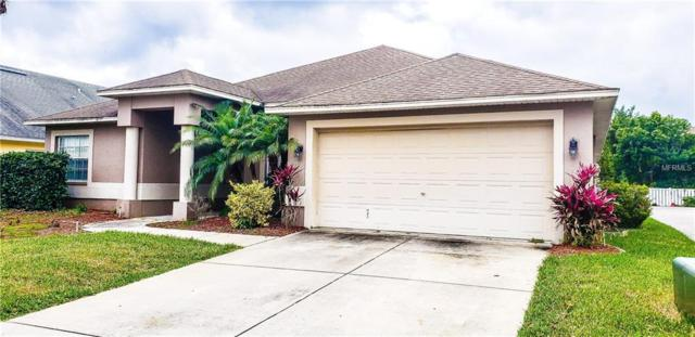 1807 Latelia Court, Trinity, FL 34655 (MLS #T3177953) :: Griffin Group