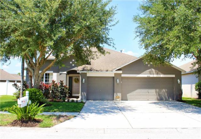 18323 Cypress Haven Drive, Tampa, FL 33647 (MLS #T3178009) :: Team Bohannon Keller Williams, Tampa Properties