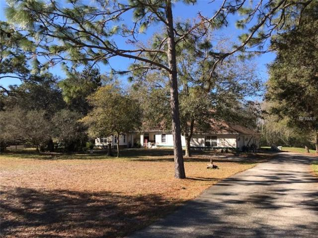 12233 Pasco Trails Boulevard, Spring Hill, FL 34610 (MLS #T3178127) :: Cartwright Realty