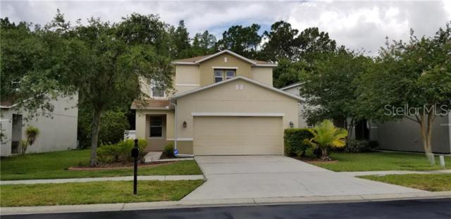 26844 Stillbrook Drive, Wesley Chapel, FL 33544 (MLS #T3178204) :: The Duncan Duo Team