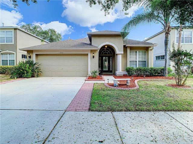 7737 Bingham Court, Tampa, FL 33625 (MLS #T3178332) :: GO Realty