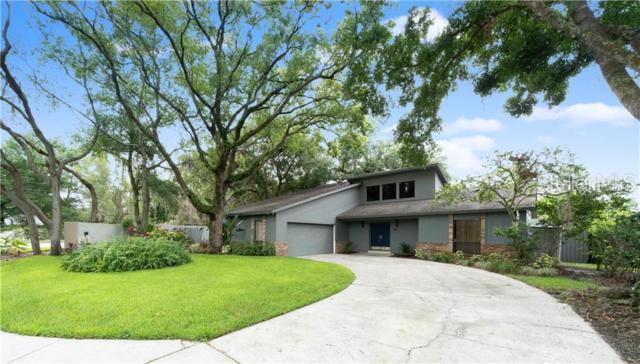 4502 Pine Hollow Drive, Tampa, FL 33624 (MLS #T3178643) :: Bridge Realty Group