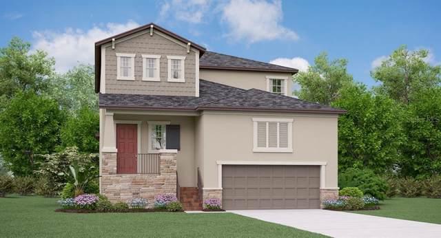 7409 S Faul Street, Tampa, FL 33616 (MLS #T3178676) :: Burwell Real Estate