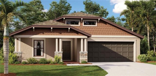 11725 Jackson Landing Place, Tampa, FL 33624 (MLS #T3178687) :: Burwell Real Estate
