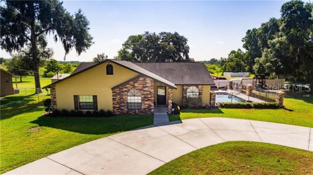 13440 3RD Street, Dade City, FL 33525 (MLS #T3179129) :: Rabell Realty Group