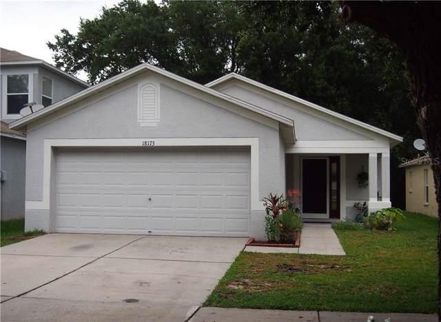 18173 Portside Street, Tampa, FL 33647 (MLS #T3179347) :: Cartwright Realty