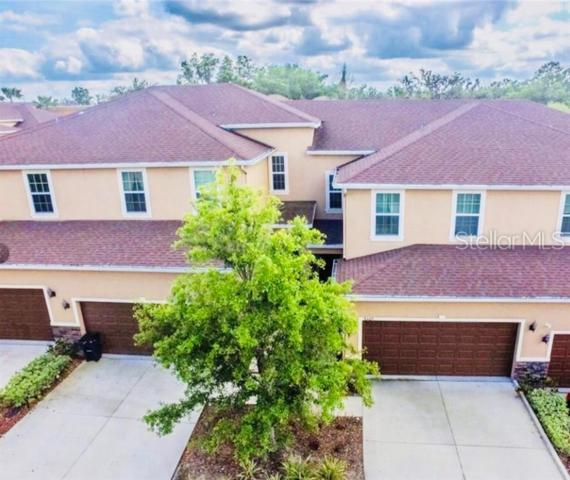 8407 Costa Blanca Court, Temple Terrace, FL 33637 (MLS #T3179406) :: The Duncan Duo Team