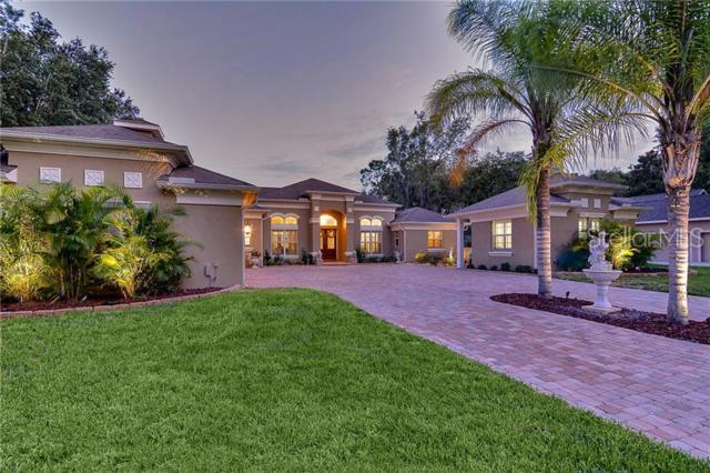 17840 Mission Oak Drive, Lithia, FL 33547 (MLS #T3179595) :: Team Bohannon Keller Williams, Tampa Properties
