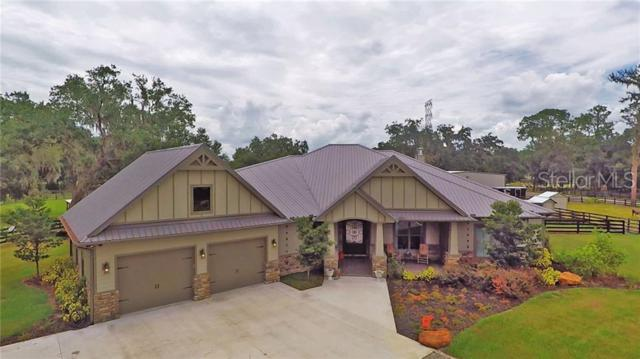 4726 W Knights Griffin Road, Plant City, FL 33565 (MLS #T3179666) :: The Duncan Duo Team