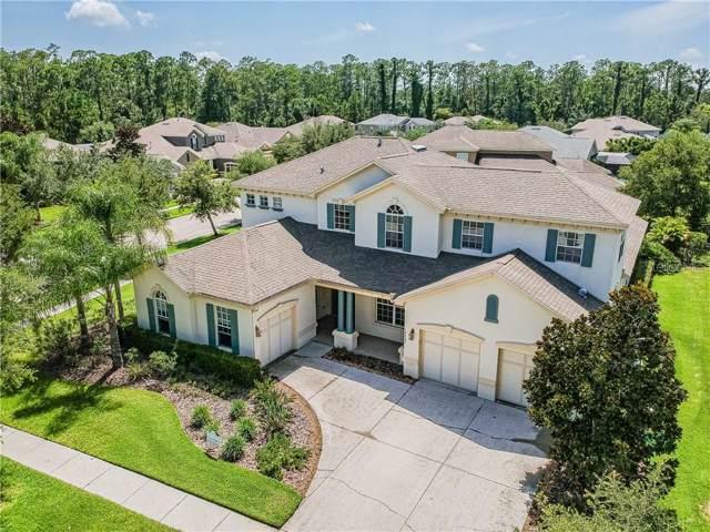14802 Tudor Chase Drive, Tampa, FL 33626 (MLS #T3180018) :: Andrew Cherry & Company