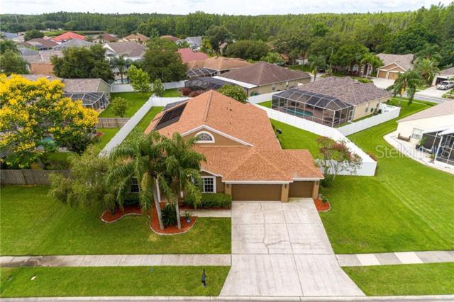 17926 Sparrows Nest Drive, Lutz, FL 33558 (MLS #T3180614) :: Andrew Cherry & Company