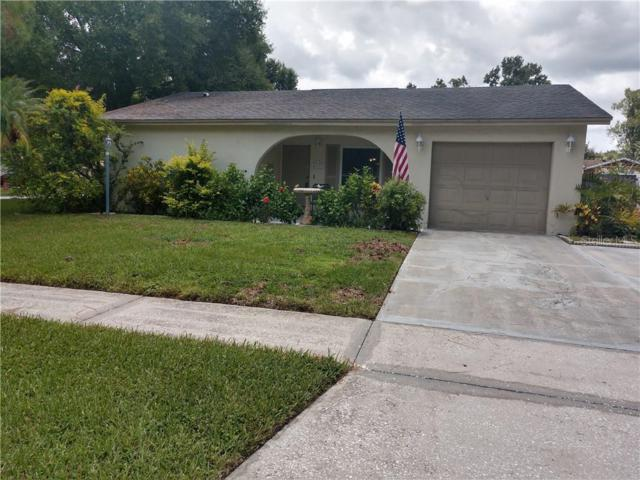 5137 Linkwood Avenue, Tampa, FL 33625 (MLS #T3181474) :: Team Bohannon Keller Williams, Tampa Properties