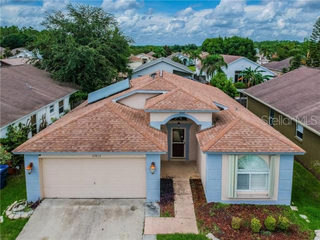22815 Richardson Lane, Land O Lakes, FL 34639 (MLS #T3181483) :: Griffin Group