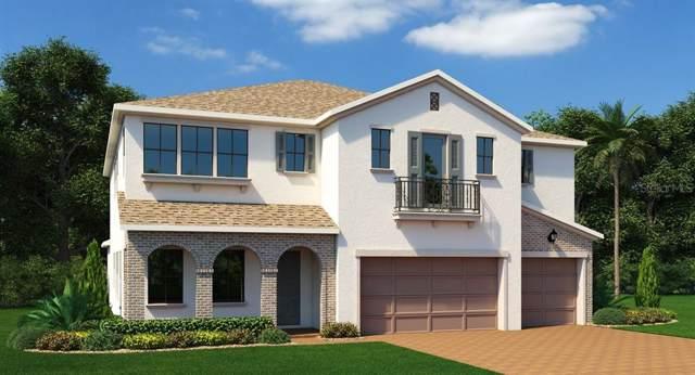 14546 Sunbridge Circle, Winter Garden, FL 34787 (MLS #T3181708) :: Bustamante Real Estate