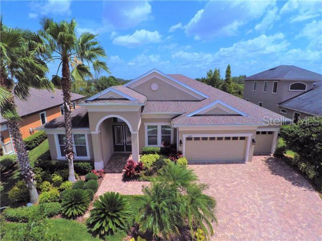 32435 Silvercreek Way, Wesley Chapel, FL 33545 (MLS #T3181846) :: Griffin Group