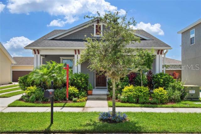 5304 Autumn Ridge Drive, Wesley Chapel, FL 33545 (MLS #T3181938) :: Griffin Group