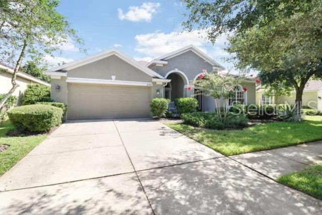 16320 Bridgelawn Avenue, Lithia, FL 33547 (MLS #T3182351) :: The Duncan Duo Team