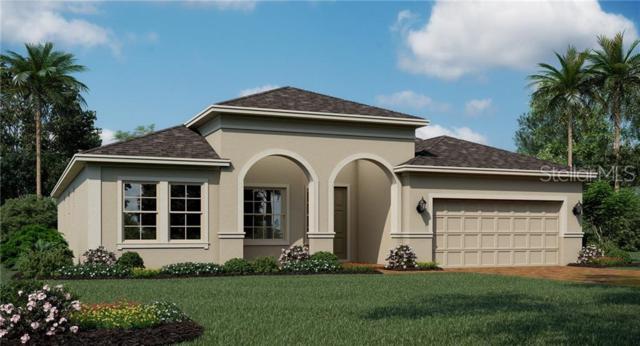 1666 Lake Sims, Ocoee, FL 34761 (MLS #T3182750) :: Team Bohannon Keller Williams, Tampa Properties