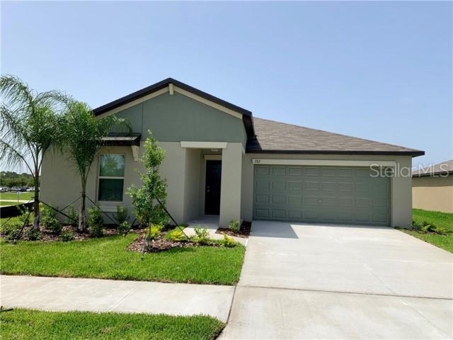 7317 Tiger Trail Court, Sun City Center, FL 33573 (MLS #T3182846) :: The Duncan Duo Team