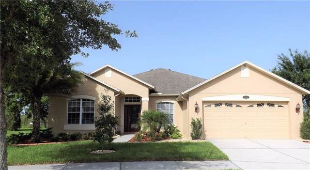20104 Natures Hike Way, Tampa, FL 33647 (MLS #T3183643) :: Medway Realty