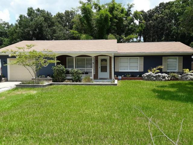 131 Connie Ave Avenue, Tampa, FL 33613 (MLS #T3184858) :: Team 54
