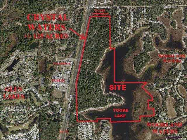 Commercial Way, Weeki Wachee, FL 34613 (MLS #T3185088) :: 54 Realty