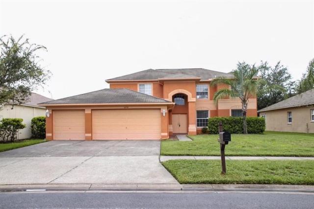 16130 Lytham Drive, Odessa, FL 33556 (MLS #T3185110) :: Cartwright Realty