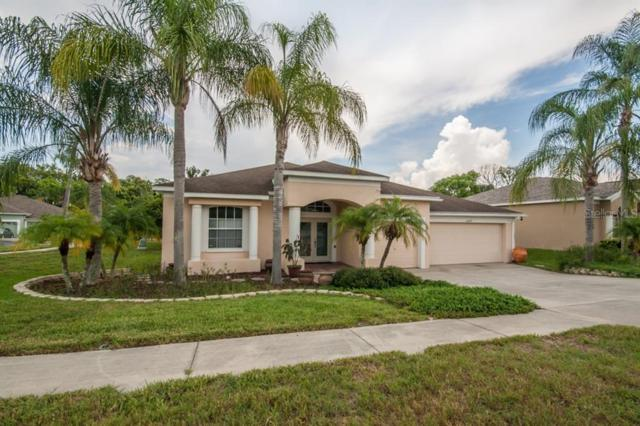 22027 Red Jacket Lane, Land O Lakes, FL 34639 (MLS #T3185132) :: Bustamante Real Estate