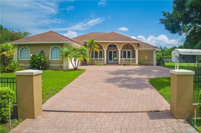 8707 N Meadowview Circle, Tampa, FL 33625 (MLS #T3185655) :: Premium Properties Real Estate Services