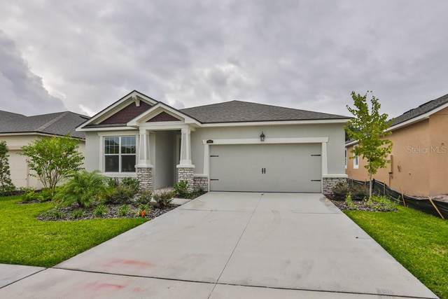 10638 Planer Picket Drive #32, Riverview, FL 33569 (MLS #T3186154) :: Griffin Group