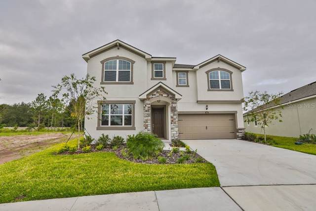 10646 Planer Picket Drive #36, Riverview, FL 33569 (MLS #T3186170) :: Griffin Group