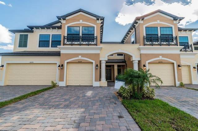 30094 Southwell Lane, Wesley Chapel, FL 33543 (MLS #T3186309) :: The Duncan Duo Team
