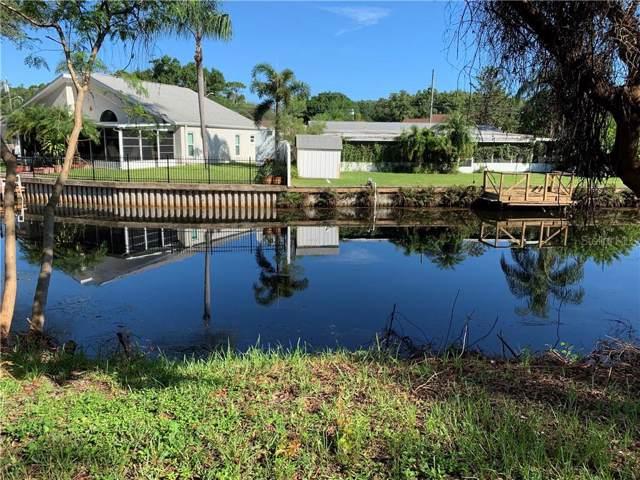 Oak Avenue, Palm Harbor, FL 34684 (MLS #T3187494) :: Rabell Realty Group