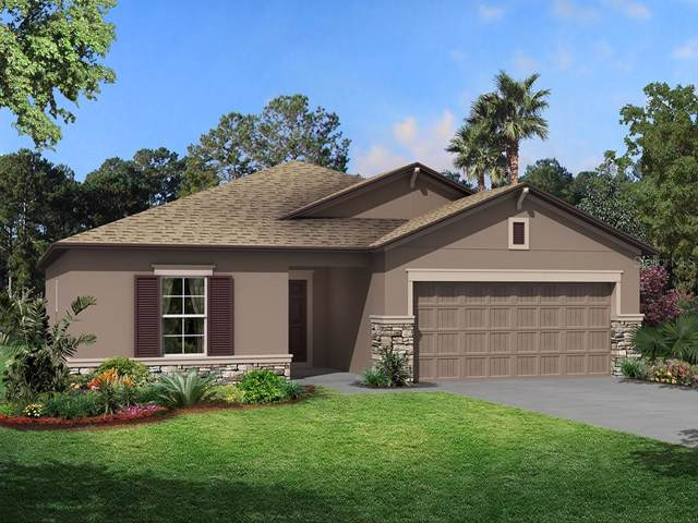 18993 Alfaro Loop, Spring Hill, FL 34610 (MLS #T3188974) :: Lovitch Realty Group, LLC