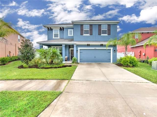 33102 Shadow Branch Lane, Wesley Chapel, FL 33545 (MLS #T3189230) :: Delgado Home Team at Keller Williams
