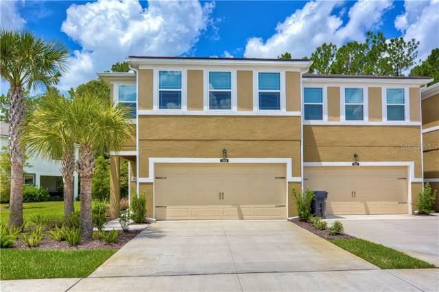 17850 Althea Blue Place, Lutz, FL 33558 (MLS #T3189451) :: Zarghami Group