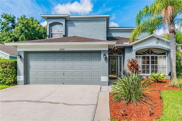 12949 Royal George Avenue, Odessa, FL 33556 (MLS #T3189531) :: Lovitch Realty Group, LLC