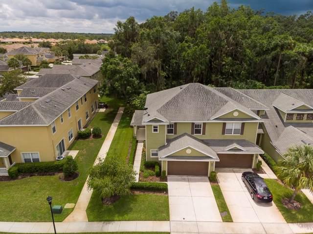 8551 Sandpiper Ridge Avenue, Tampa, FL 33647 (MLS #T3190650) :: Cartwright Realty